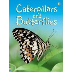 Caterpillars & Butterflies Beginners, Carte Usborne Engleza
